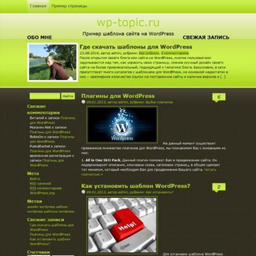 Бесплатный шаблон WordPress Black Iguana