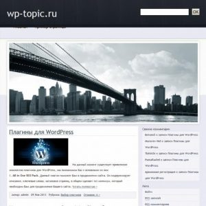 Бесплатный шаблон WordPress Business Tint