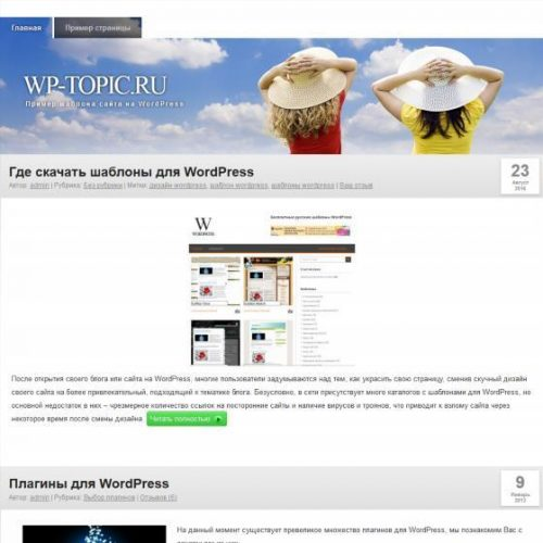 Бесплатный шаблон WordPress Clear Style 12 шапок