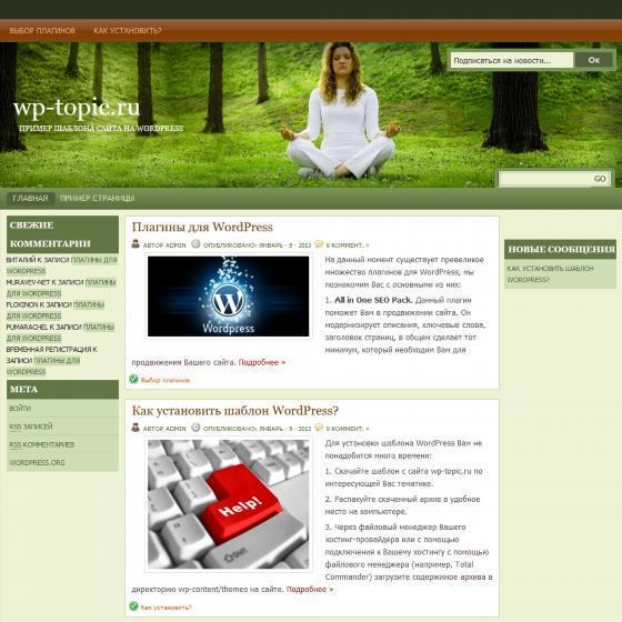 Бесплатный шаблон Wordpress Natural Health