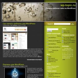 Бесплатный шаблон Wordpress Olive Theme