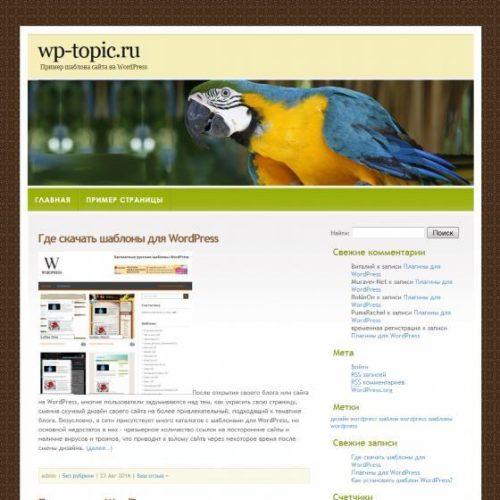 Бесплатный шаблон WordPress Сolourful Bird