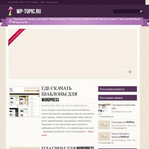 Бесплатный шаблон WordPress Zylyz