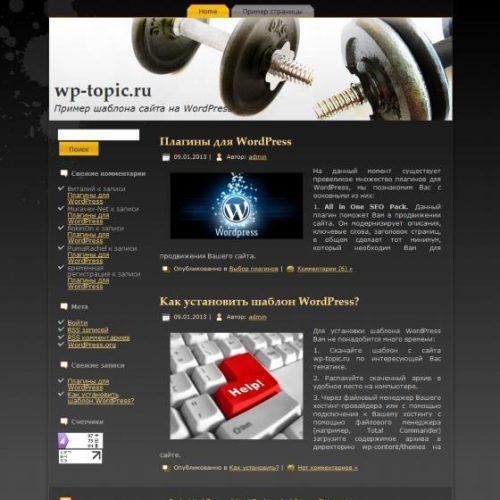 Бесплатный шаблон WordPress At The Gym