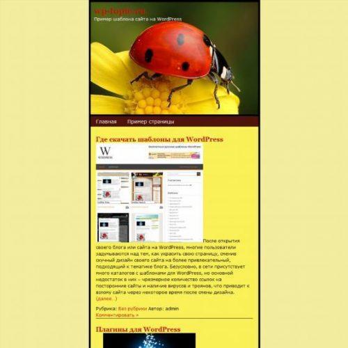 Бесплатный шаблон WordPress Beetle