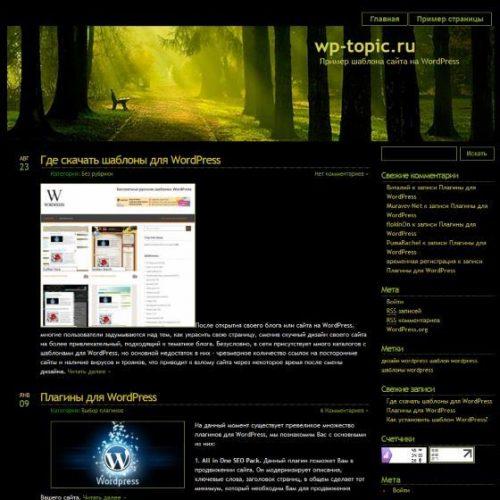 Бесплатный шаблон WordPress Blackmagic