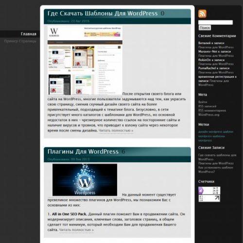 Бесплатный шаблон WordPress Briny