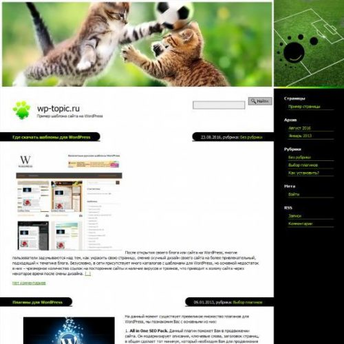 Бесплатный шаблон WordPress Catball