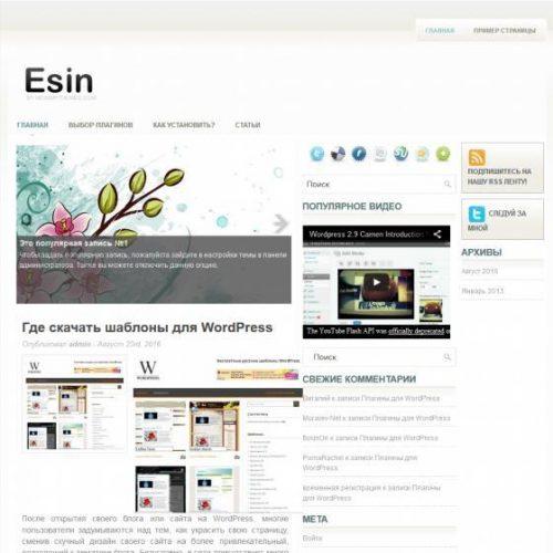 Бесплатный шаблон WordPress Esin