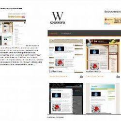 Бесплатный шаблон Wordpress Expositio