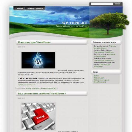 Бесплатный шаблон WordPress Field of dreams