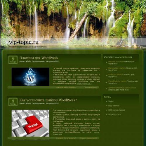 Бесплатный шаблон WordPress Forest Waterfalls