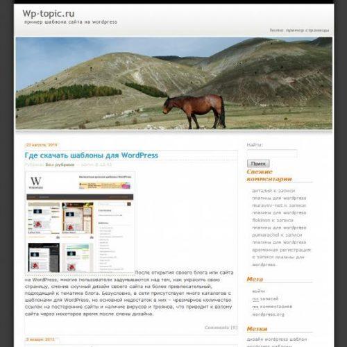 Бесплатный шаблон WordPress Freedom