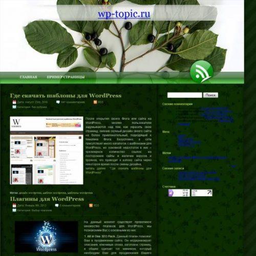 Бесплатный шаблон WordPress Green 2