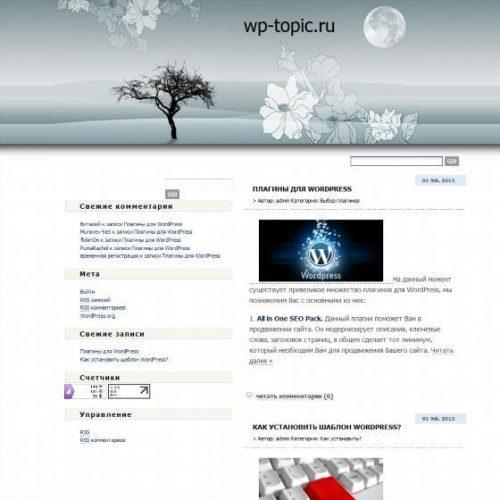 Бесплатный шаблон WordPress MoonLight