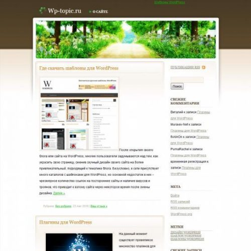 Бесплатный шаблон WordPress Peaceful Rush