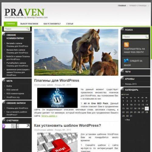 Бесплатный шаблон WordPress Praven