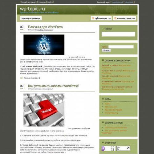 Бесплатный шаблон WordPress Realistic