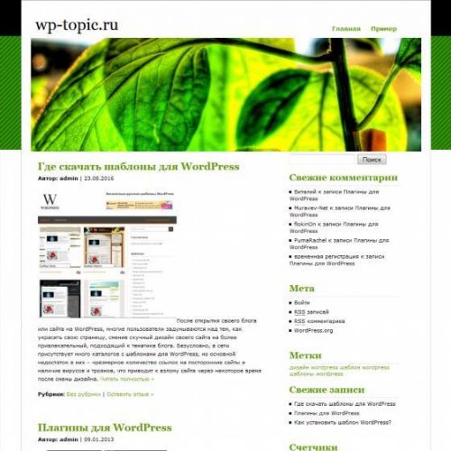 Бесплатный шаблон WordPress Rockin Green Leaf