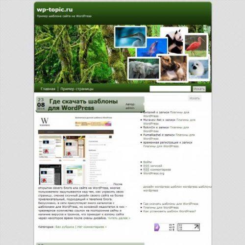 Бесплатный шаблон WordPress The Animal