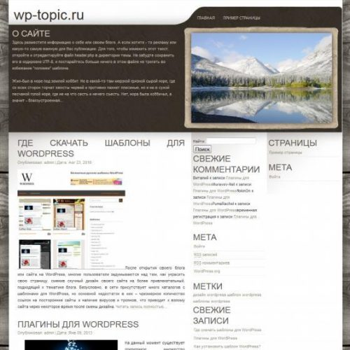 Бесплатный шаблон WordPress Wilderness