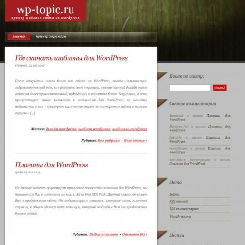 Бесплатный шаблон WordPress Woodenly
